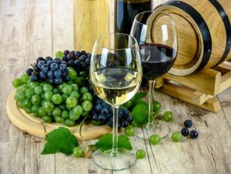 5 conseils pour investir dans le vin