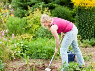 image-entretenir-son-jardin